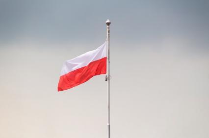 Zdjęcie główne #1492 - Domeny .pl wciąż bezkonkurencyjne na polskim rynku. Ale coś się powoli zmienia